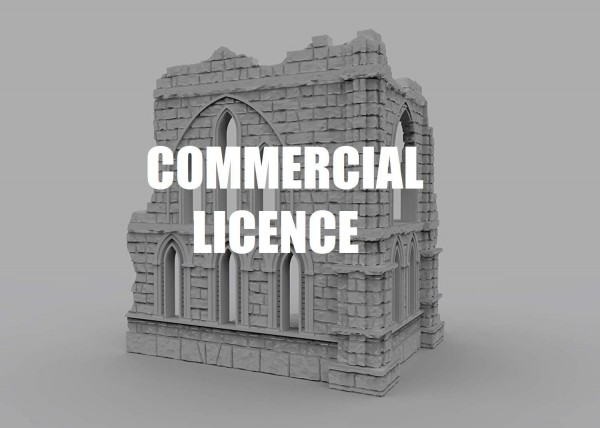 LIFETIME COMMERCIAL LICENCE (2)